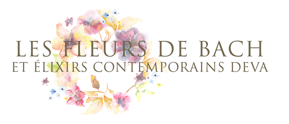 Fleurs de Bach
